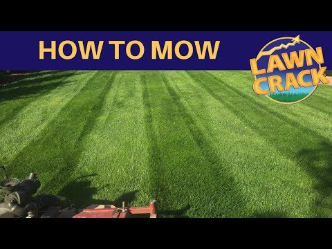 How to Mow a Lawn | Professional Lawn Mowing Tutorial | How to Mow, Edge, Trim, & Blow | LawnCrack