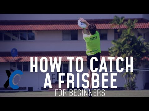 How to Catch a Frisbee for Beginners