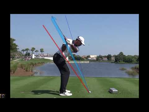 Tiger Woods, check the swing plane with continuous still images(DTL,Iron)
