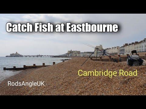 Catch Fish at Eastbourne: CAMBRIDGE ROAD
