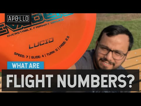 What Do Flight Numbers Mean? | Disc Golf Beginner's Guide